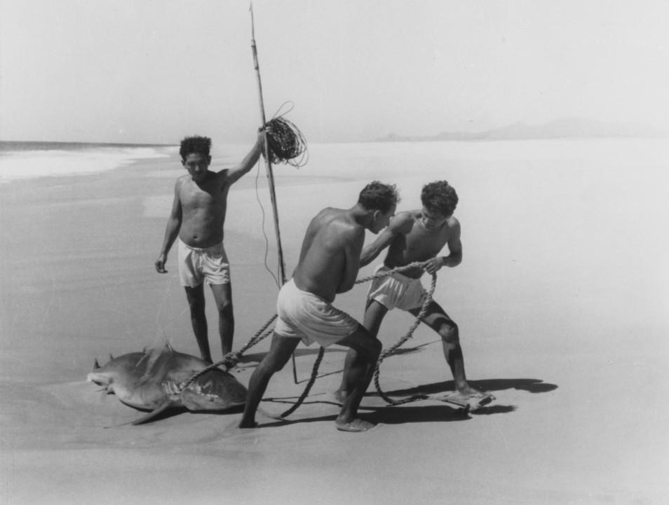 Pêcheurs de requins (Acapulco), 1950 © Lola Álvares Bravo
