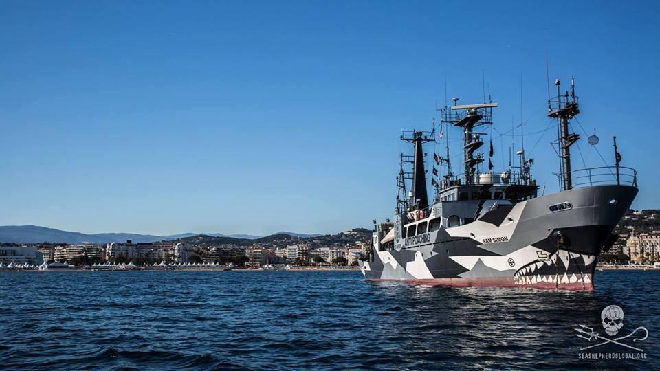 Sea ShepherdLe Sam Simon lors de son arrêt à la croisette © Sea Shepherd