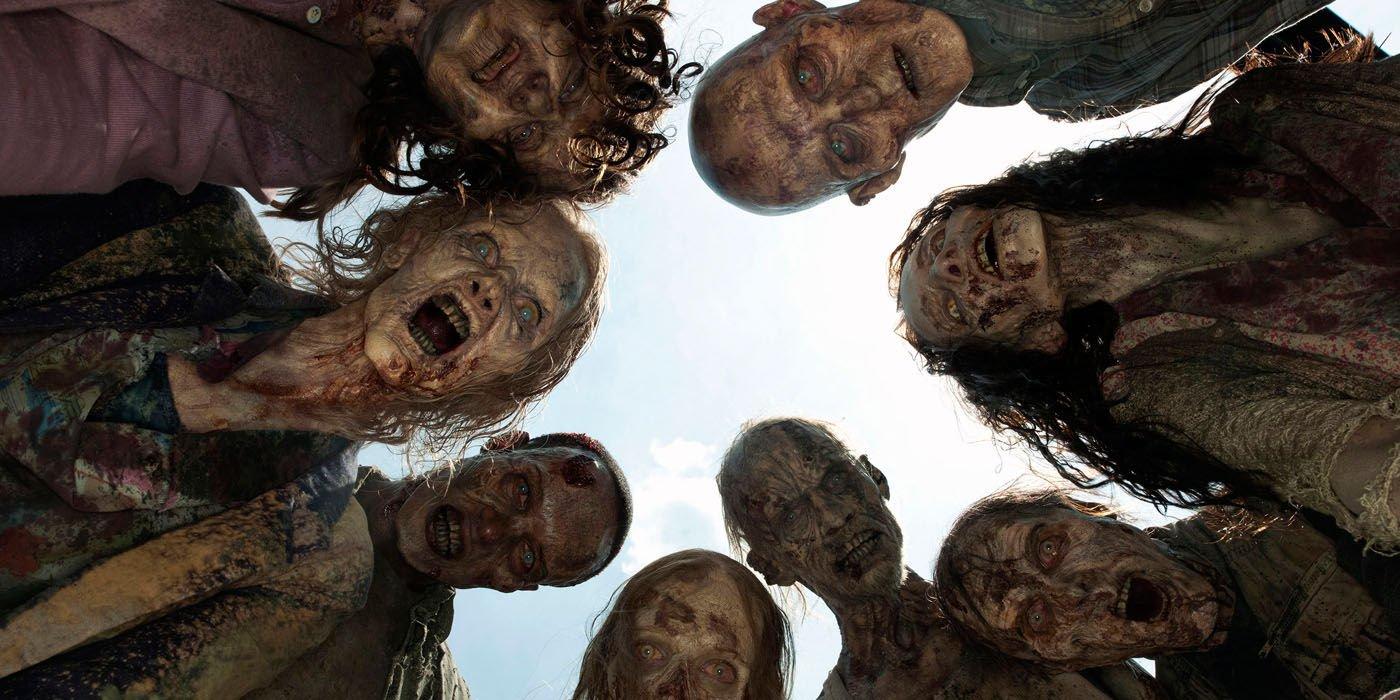 The Walking Dead, sérié créée par Frank Darabont © AMC
